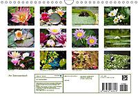 Am Seerosenteich (Wandkalender 2019 DIN A4 quer) - Produktdetailbild 13