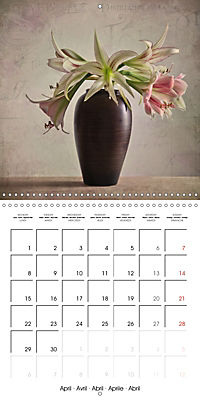 Amaryllis Vintage (Wall Calendar 2019 300 × 300 mm Square) - Produktdetailbild 4