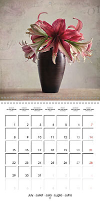 Amaryllis Vintage (Wall Calendar 2019 300 × 300 mm Square) - Produktdetailbild 7