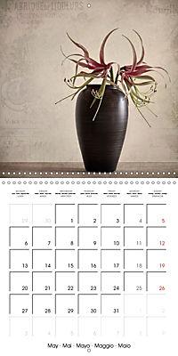 Amaryllis Vintage (Wall Calendar 2019 300 × 300 mm Square) - Produktdetailbild 5