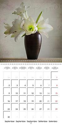 Amaryllis Vintage (Wall Calendar 2019 300 × 300 mm Square) - Produktdetailbild 9