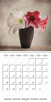 Amaryllis Vintage (Wall Calendar 2019 300 × 300 mm Square) - Produktdetailbild 11