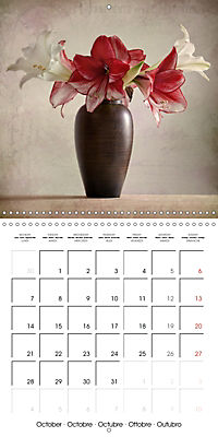Amaryllis Vintage (Wall Calendar 2019 300 × 300 mm Square) - Produktdetailbild 10