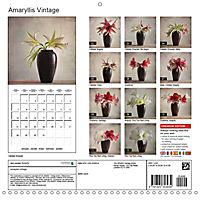 Amaryllis Vintage (Wall Calendar 2019 300 × 300 mm Square) - Produktdetailbild 13
