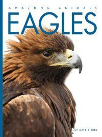 Amazing Animals: Eagles, Kate Riggs