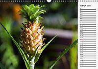 Amazing Costa Rica (Wall Calendar 2019 DIN A3 Landscape) - Produktdetailbild 3