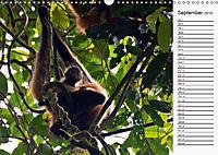 Amazing Costa Rica (Wall Calendar 2019 DIN A3 Landscape) - Produktdetailbild 9