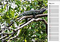 Amazing Costa Rica (Wall Calendar 2019 DIN A3 Landscape) - Produktdetailbild 5