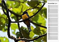 Amazing Costa Rica (Wall Calendar 2019 DIN A3 Landscape) - Produktdetailbild 11