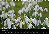 Amazing flowers (Wall Calendar 2019 DIN A4 Landscape) - Produktdetailbild 1