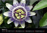 Amazing flowers (Wall Calendar 2019 DIN A4 Landscape) - Produktdetailbild 3