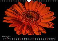 Amazing flowers (Wall Calendar 2019 DIN A4 Landscape) - Produktdetailbild 2