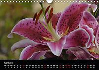 Amazing flowers (Wall Calendar 2019 DIN A4 Landscape) - Produktdetailbild 4