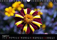 Amazing flowers (Wall Calendar 2019 DIN A4 Landscape) - Produktdetailbild 8