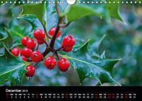 Amazing flowers (Wall Calendar 2019 DIN A4 Landscape) - Produktdetailbild 12