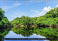 Amazonas - Faszination Regenwald (Tischkalender 2019 DIN A5 quer) - Produktdetailbild 5