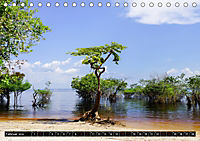 Amazonas - Faszination Regenwald (Tischkalender 2019 DIN A5 quer) - Produktdetailbild 2