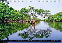 Amazonas - Faszination Regenwald (Tischkalender 2019 DIN A5 quer) - Produktdetailbild 8