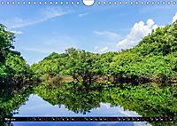 Amazonas - Faszination Regenwald (Wandkalender 2019 DIN A4 quer) - Produktdetailbild 5