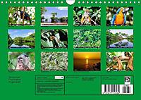 Amazonas - Faszination Regenwald (Wandkalender 2019 DIN A4 quer) - Produktdetailbild 13