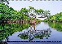 Amazonas - Faszination Regenwald (Wandkalender 2019 DIN A3 quer) - Produktdetailbild 8