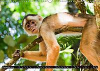 Amazonas - Faszination Regenwald (Wandkalender 2019 DIN A3 quer) - Produktdetailbild 12