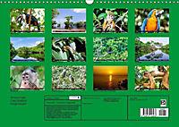 Amazonas - Faszination Regenwald (Wandkalender 2019 DIN A3 quer) - Produktdetailbild 13