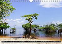 Amazonas - Faszination Regenwald (Wandkalender 2019 DIN A4 quer) - Produktdetailbild 2