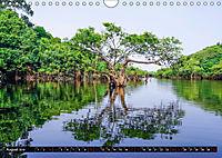 Amazonas - Faszination Regenwald (Wandkalender 2019 DIN A4 quer) - Produktdetailbild 8