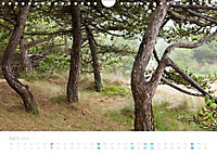 Ameland (Wandkalender 2019 DIN A4 quer) - Produktdetailbild 4