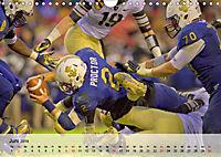 American Football. Nichts für Feiglinge! (Wandkalender 2019 DIN A4 quer) - Produktdetailbild 6