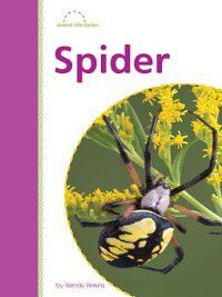 Amicus Readers: Animal Lifecycles (Level 2): Spider, Wendy Perkins