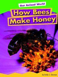 Amicus Readers: My Community (Level 1): How Bees Make Honey, Emily C. Dawson