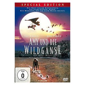 Ami Und Die Wildgänse