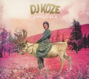 Amygdala, Dj Koze