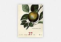 An Apple A Day Kalender 2019 - Produktdetailbild 10