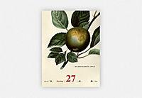 An Apple A Day Kalender 2019 - Produktdetailbild 3