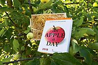 An Apple A Day Kalender 2019 - Produktdetailbild 4