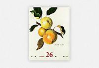 An Apple A Day Kalender 2019 - Produktdetailbild 8
