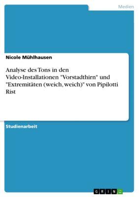 Analyse des Tons in den Video-Installationen Vorstadthirn und Extremitäten (weich, weich) von Pipilotti Rist, Nicole Mühlhausen