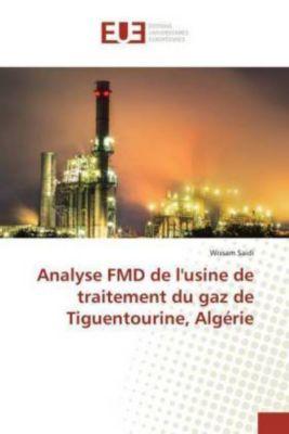 Analyse FMD de l'usine de traitement du gaz de Tiguentourine, Algérie, Wissam Saidi
