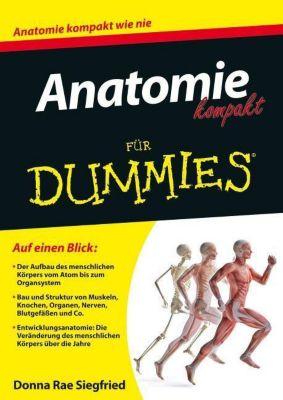 Anatomie kompakt für Dummies, Donna Rae Siegfried