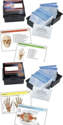 Anatomie-Lernkarten, 2 Tle.