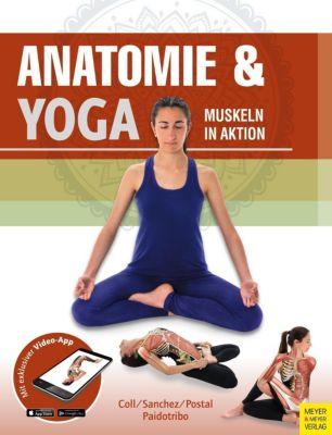 Anatomie & Yoga