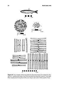 Andean Archaeology III - Produktdetailbild 8