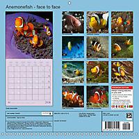 Anemonefish - face to face (Wall Calendar 2018 300 × 300 mm Square) - Produktdetailbild 13