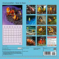 Anemonefish - face to face (Wall Calendar 2019 300 × 300 mm Square) - Produktdetailbild 13