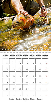 Angling - water, solitude and nature (Wall Calendar 2019 300 × 300 mm Square) - Produktdetailbild 10