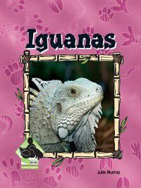Animal Kingdom Set 1: Iguanas, Julie Murray