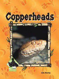 Animal Kingdom Set 2: Copperheads, Julie Murray
